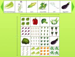 Small Picture Vegetable Garden Planner Free Zandalusnet