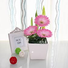 Flowers Decoration For Home Minimalist