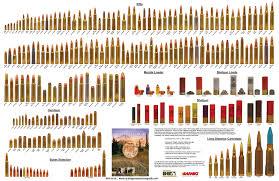 Rifle Caliber Chart Rifle Cartridge Sizes Chart Www Bedowntowndaytona Com
