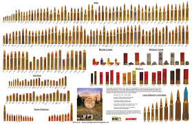 Rifle Cartridge Sizes Chart Www Bedowntowndaytona Com