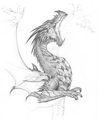 Realistic Dragon Fighting Pictures Google Search Dragon