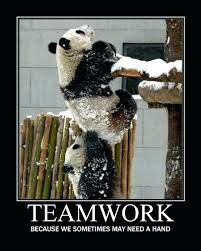 Teamwork Quotes Funny Cool Team Building Quotes Funny Magnificent Team Building Quotes Funny