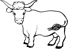 Small Picture Cow coloring pages with long horns ColoringStar