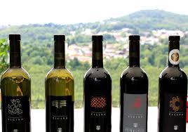 vini italiani svizzera