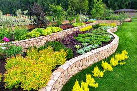 landscaping 101 everything you need to