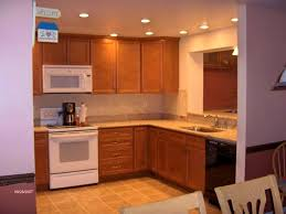 lighting for a small kitchen. Home Lighting, Extraordinary Kitchen Recessed Lighting Layout Spacing Pictures Tool For Apartment Small L A
