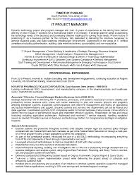 Resume Templates Information Technology Manager Fresh Information