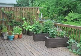patio gardens. Plain Gardens Regardless Of How Large Or Small Your Patio There Is Always Room For A  Garden You Can Build Some Raised Beds To Use On  Inside Patio Gardens T