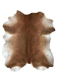 Small cow hide rugs Bedroom Hide Area Rugs Cowhide Rugs For Home Decor Brown White Authentic Cow Hide Area Rugs Small Furniture Shop Furniture Ideas Blog Hide Area Rugs Cowhide Rugs For Home Decor Brown White Authentic Cow