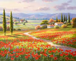 900 720 pixels poppy fields by sung kim 39743