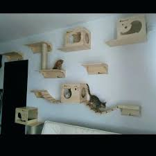 wall mounted cat furniture. Fine Mounted Cat Wall Shelves For Cats Oval Bed Furniture Throughout Mounted W