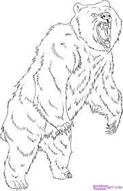 Small Picture Forest Animals Coloring Pages Coloring Coloring Pages
