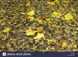 floor tile color patterns. Brilliant Color Mosaic Tiled Floor Tiles Autumn Leaves Yellow Patterns Abrsatct Art  Horizontal Colour Color Squares To Floor Tile Color Patterns