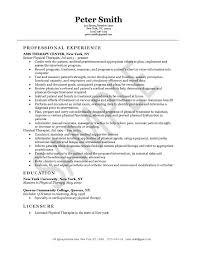 physical therapist resume example professional experience