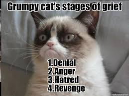 Grumpy cats stages of grief - WeKnowMemes Generator via Relatably.com