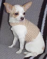 Dog Sweater Crochet Pattern Classy Easy DOG SWEATER Free Crochet Pattern Free Crochet Pattern