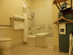 Handicap Accessible Bathroom Amazing Handicap Accessible Shower Ideas Chair Design Collection