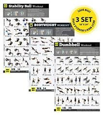Full Gym Workout Chart Amazon Com Gym Home Exercise Posters Set Of 3 Workout Chat