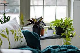 36+ <b>DIY</b> Plant Stand <b>Ideas</b> for Indoor and Outdoor Decoration