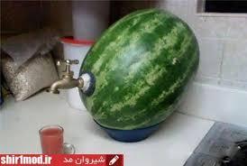 Image result for جالب و خنده دار