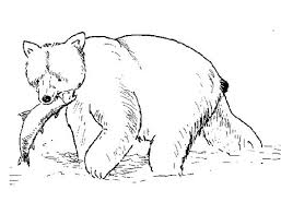 Small Picture Grizzly Bear Coloring Pages GetColoringPagescom