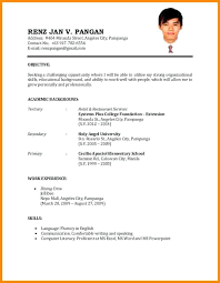 Sample Of Resume Extraordinary Format Of A Resume For Job Application Example Resume Format For Job