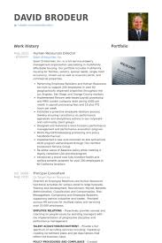 Human Resources Director Resume Samples Visualcv Resume Samples