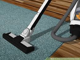 image titled clean an indoor outdoor carpet step 3