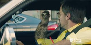 Liberty Mutual Insurance Commercial Liberty Mutual Gets Into The Insurance Mascot Game With The