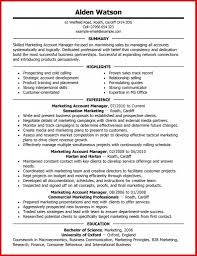 Junior Accounts Manager Resume Customer Account Manager Resume Resume Samples For Sales Sample 12