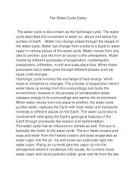 paragraph essay on the water cycle kids science the water  water cycle reading and writing nys dept of environmental
