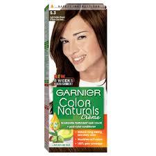 Garnier Light Brown Hair Color Price Garnier Color Naturals 5 3 Light Golden Brown Haircolor100 Gm