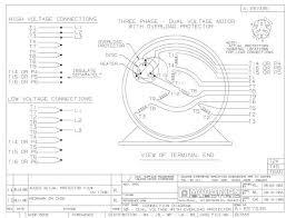 single phase motor two capacitor wiring diagram images sd marathon electric motors wiring diagram nilzanet