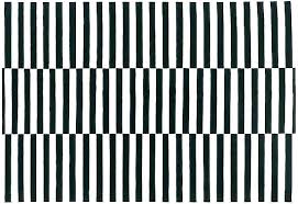 black striped rug and white area rugs outdoor 3x5