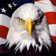 Image result for America the great pics