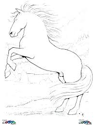 Printable Horse Coloring Pages Realistic Horse Coloring Pages