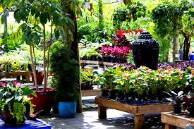 r garden center in miami fl designs