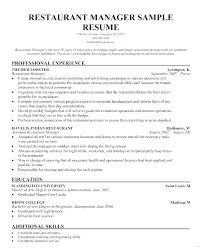 Resume Professional Profile Example Examples Of Resume Profile Interesting Professional Profile Resume