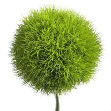 How To Make Fluffy Decoration Balls Green Ball Dianthus Flowers and Fillers Flowers by category 91