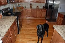kitchen hardwood floor jpg