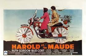 I Think I See The Light Harold And Maude Movie Think Coming To Terms With Harold And Maude
