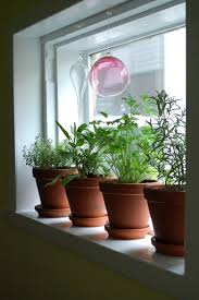 Garden Kitchen Windows Kitchen Landscape Garden Kitchen Window Herb Garden I Herb Wall