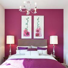 Hot Pink Bedroom Paint Hot Pink Colour Combination For Living Room Home Combo