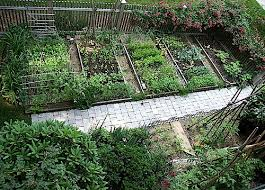 Small Picture Beautiful Vegetable Garden Photos decorating clear
