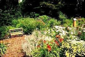 hummingbird garden. Perfect Garden In Hummingbird Garden U