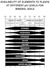 Vegetable Ph Chart Soil Ph And Why It Matters