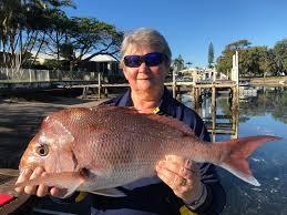 Nsw amateur fishing association