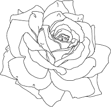 Small Picture Flower Vines Coloring Page Wild Printable Free Coloring Pages With