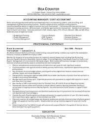Production Accountant Sample Resume Cool Sample Resume Skills And Accomplishments Fruityidea Resume