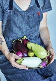 A Guide To Different Eggplant Varieties Kitchn
